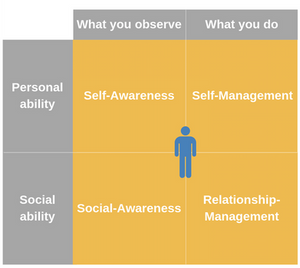The emotional intelligence elements