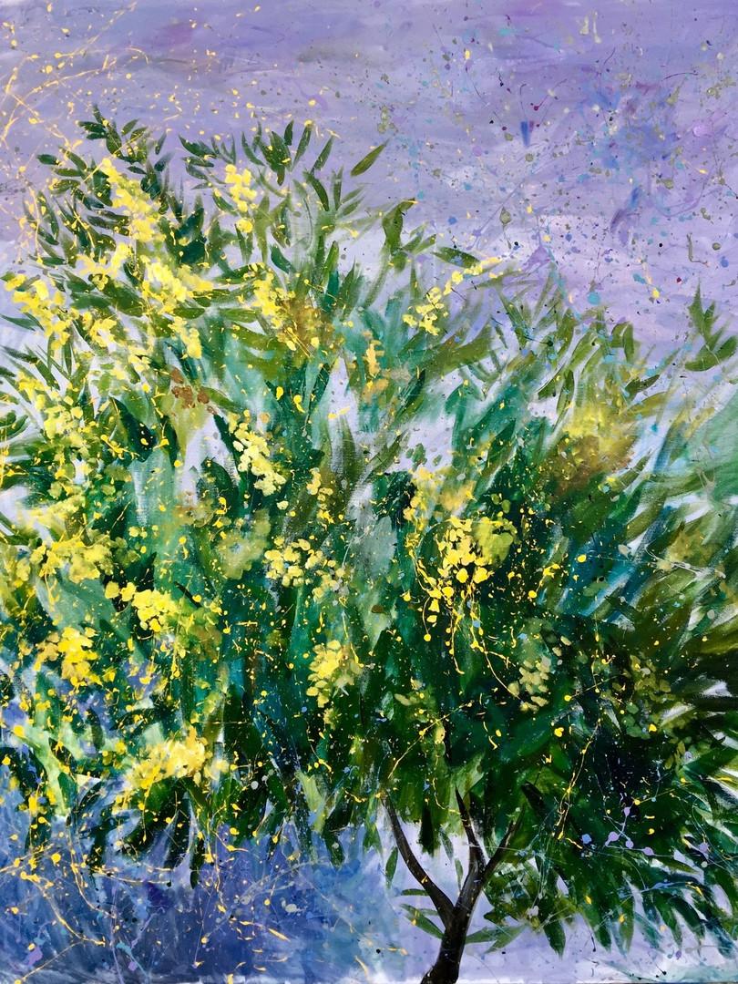 Ekaterina Khazina mimoza.jpg