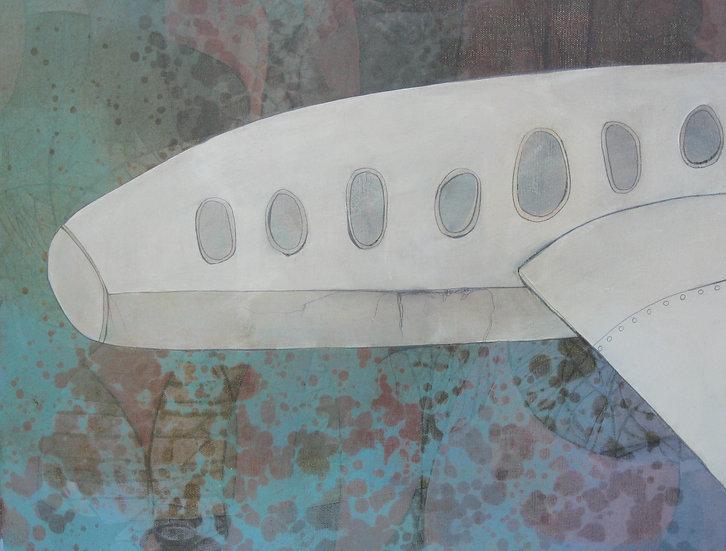 Manatee Plane