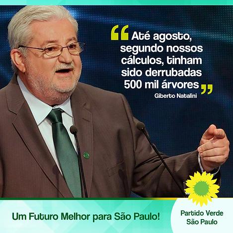 noticia41.png