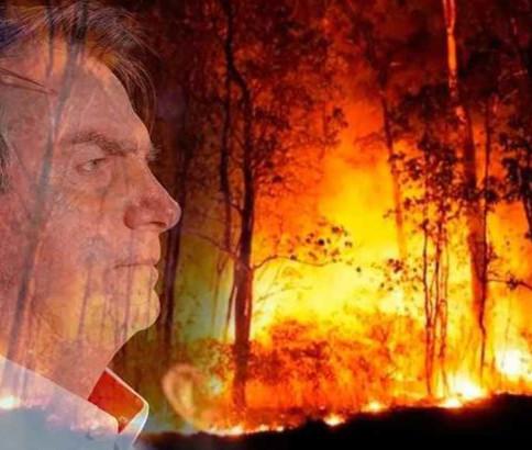 Meio ambiente no Brasil: enquanto o Planalto ilude, o STF esclarece