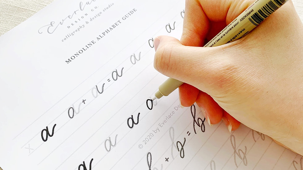 Monoline Calligraphy Digital Workbook