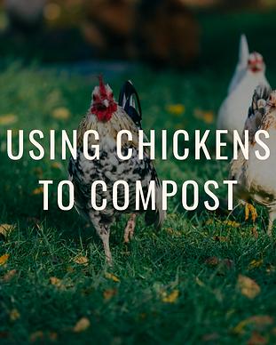Building a Hot compost pile (2).png