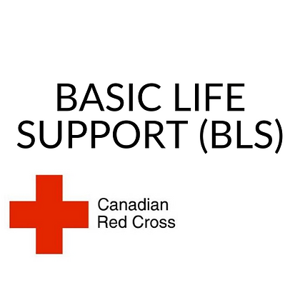Basic Life Support (BLS in class at a later date in Calgary)