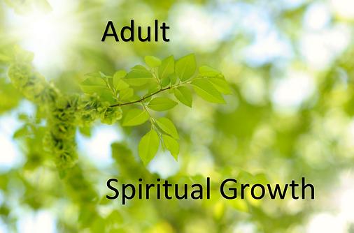 Adult Spiritual Growth.png