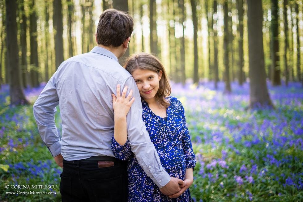 Hallerbos sedinta foto maternitate belgi