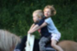 reiten, Kinder, Reitunterricht, Kindergarten, Reitkindergarten Wien