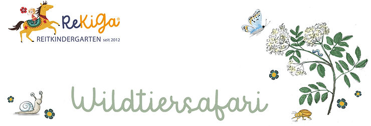 Header_Wildtiersafari.jpg