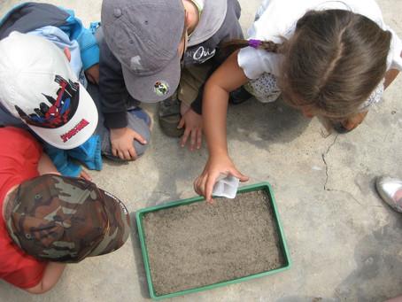 Vamos falar sobre Educação Ambiental?