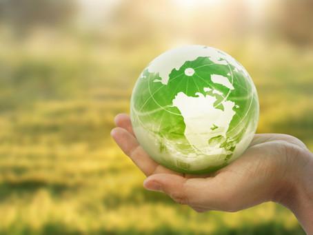 Conheça a Circular Engenharia e Consultoria Ambiental