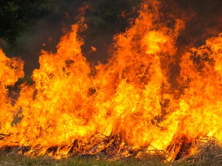 Agosto já registra mais focos de incêndio na Amazônia do que mesmo mês de 2019