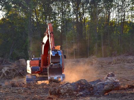 Brasil tem maior índice de desmatamento na Amazônia em 12 anos