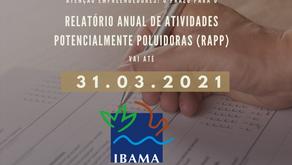 Prazo para preenchimento do RAPP 2021 termina em 31 de março