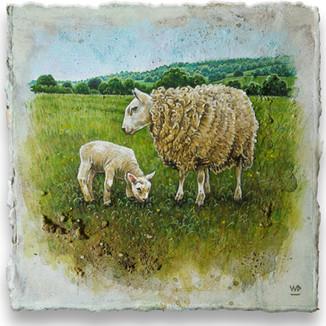 Ewe & grazing lamb. 13x13cm. - SOLD