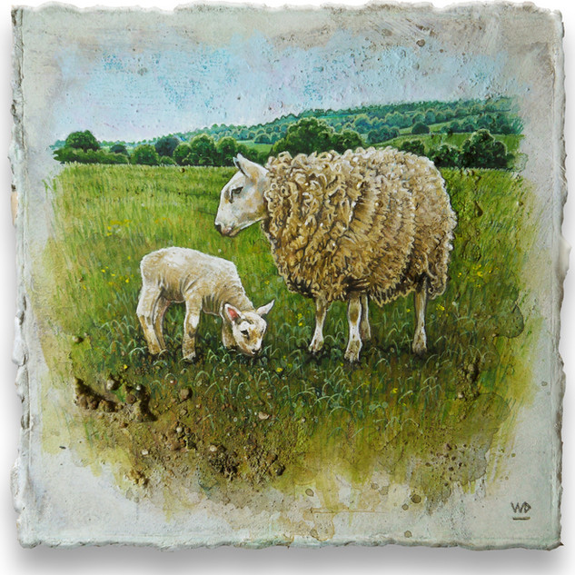 Ewe & grazing lamb. 13x13cm. - SOLD