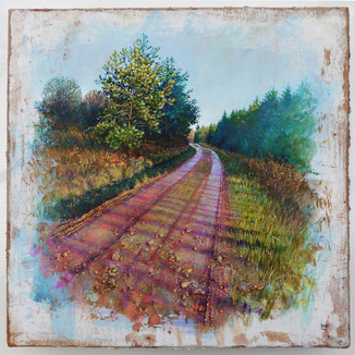 Winter Morning Trail. 32x32cm. - SOLD