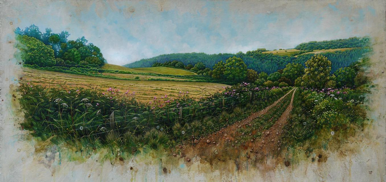 Wye Valley with wild flowers. 42x89cm