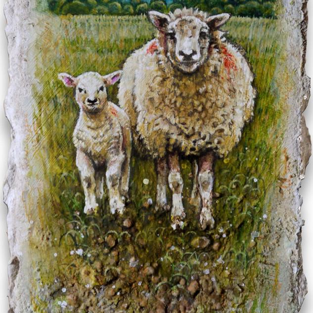 Ewe & lamb wi' red spots. 10.5x6cm. - Av