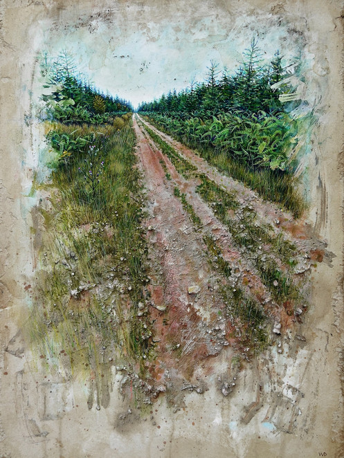 Straight track to Cannop. 45x64cm.