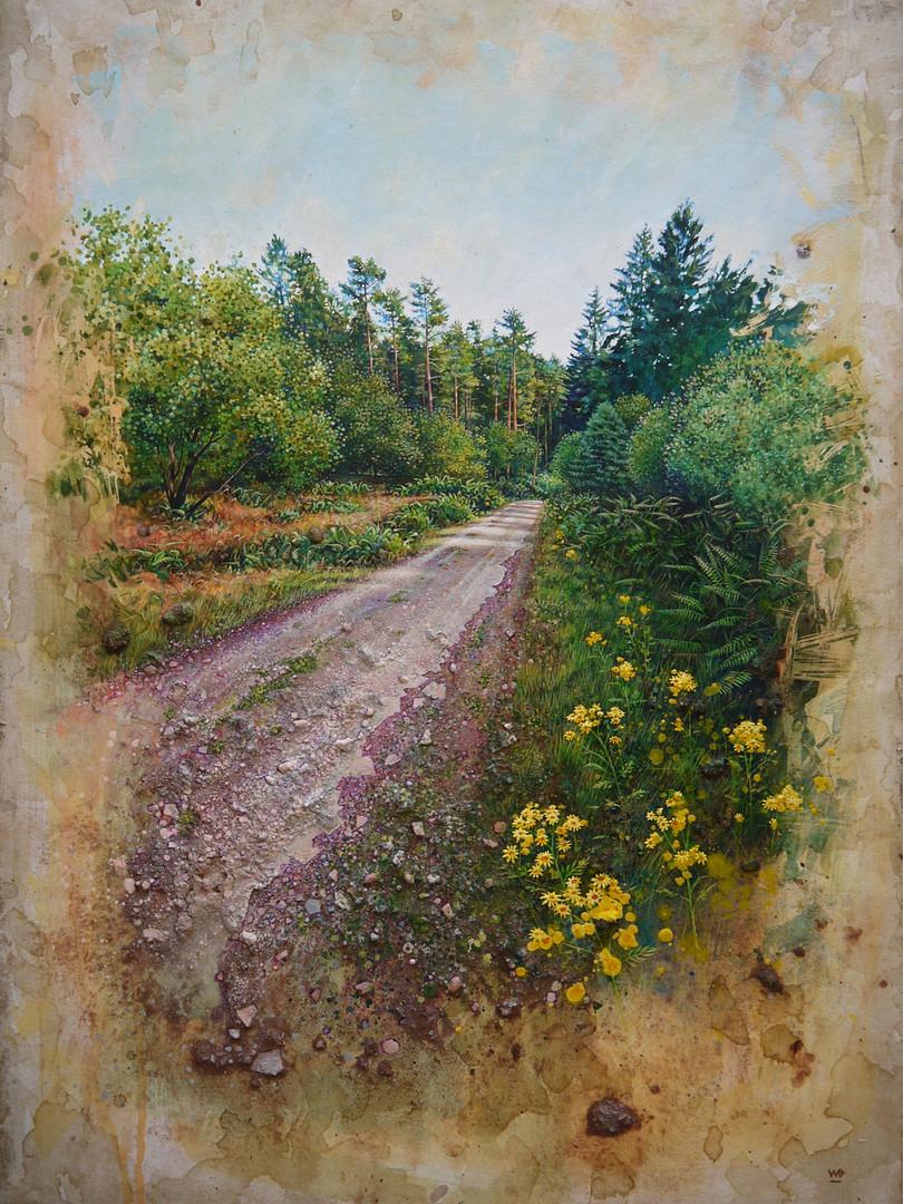 Track with wild flowers. 45x64cm.