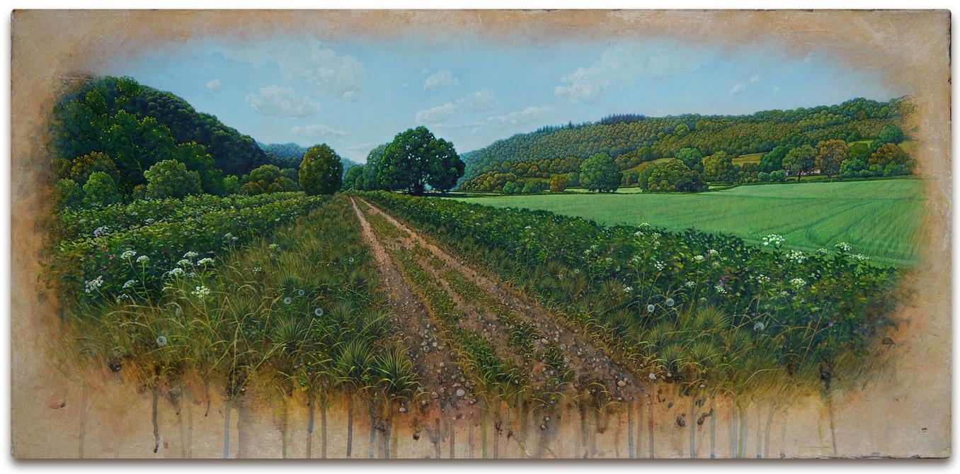 Wye Valley Ramble. 42x89cm