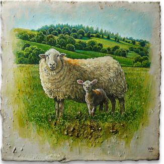 Ewe & lamb wi'orange spots. 13x13cm. - Available