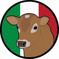 Jersey Girl Logo.webp