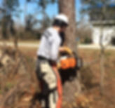 5-Clearing tornado trees in Georgia.jpg