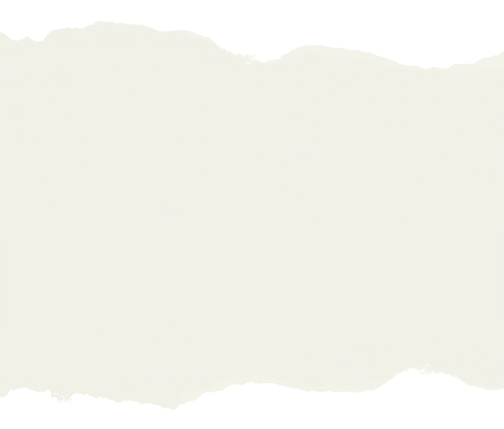 background_banners_long_neutral_01.png
