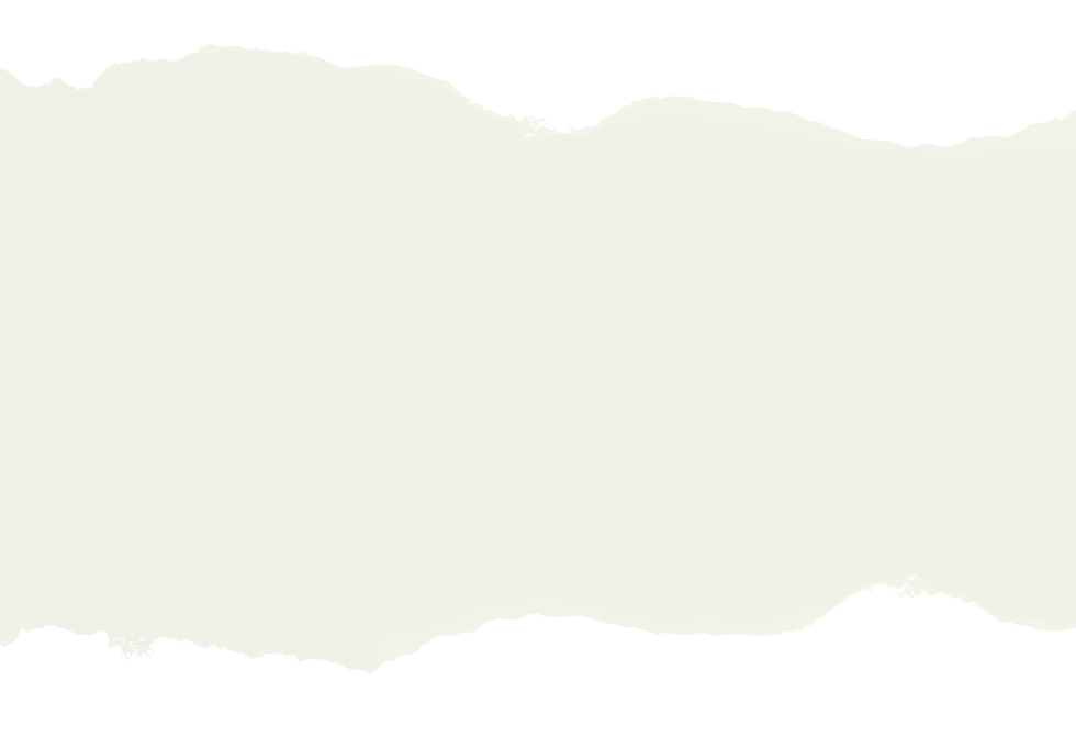 background_banners_long_neutral_02.png