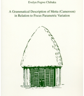 A Grammatical Description of Meta? in Relation to Focus Parametric Variation