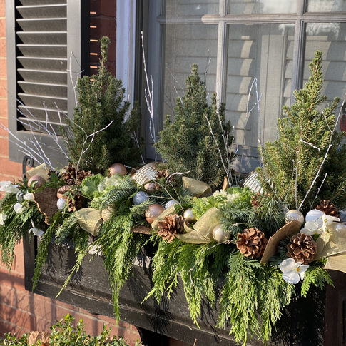 Christmas window box with evergreens, miniature trees, ribbon loops and pinecones