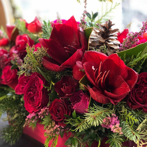 Evergreen centerpice with red roses and amaryllis