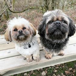 Leo et Sunny