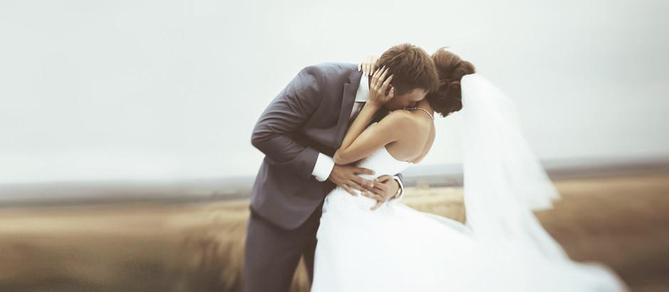 Introducing: Weddingbird