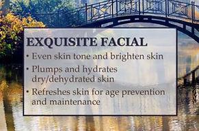 Remineralizing Seaweed Facial - Express, good for Eczema, Rosacea, Psoriasis. 60 min Pure Marine Collagen Facial, Anti-Aging Facial, Sensitive Skin, Mens Facial, Vitamin C Facial, Renew Skin, Rejuvenate Skin, Refresh Complextion, Rosacea, Psoriasis, Eczema, skincare Boston, ethnic skin, acne skin, healthly skin, facial photodamage, sunspots, dark circles, age management,