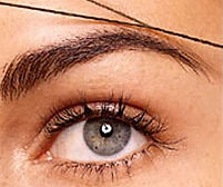 Eyebrow Threading, Facial Threading, Eyebrow Waxing, The Man Brow, Brazilian, Bikini, French Bikini, Back Wax, Chest Wax, Abdomen Wax, Shoulder Wax, Leg Wax, Toe Wax, Lip Wax, Chin Wax, Back Bay Hair Removal, smooth skin, manscaping, mens grooming