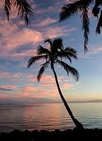 100330_Fiji Facebook_0030.jpg