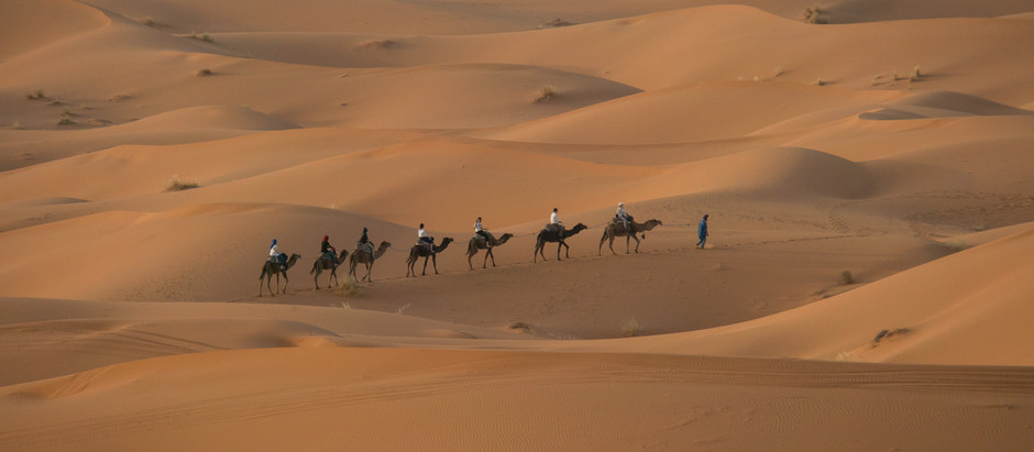 Morocco: Immersion into a World Beyond Expectation