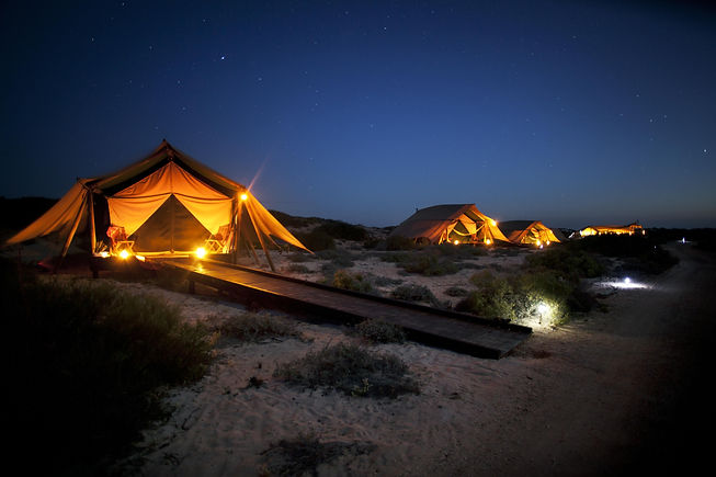 Sal-Salis_Ningaloo-Reef_By-Night.jpg