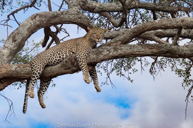 171105_Tanzania 2017_0162-2.jpeg