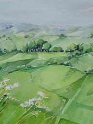 SOLD Cow parsley, Eggardon Hill