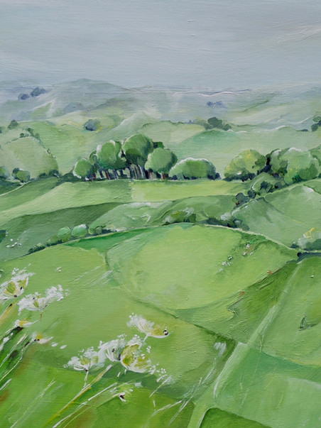 SOLD Cow parsley, Eggardon Hill