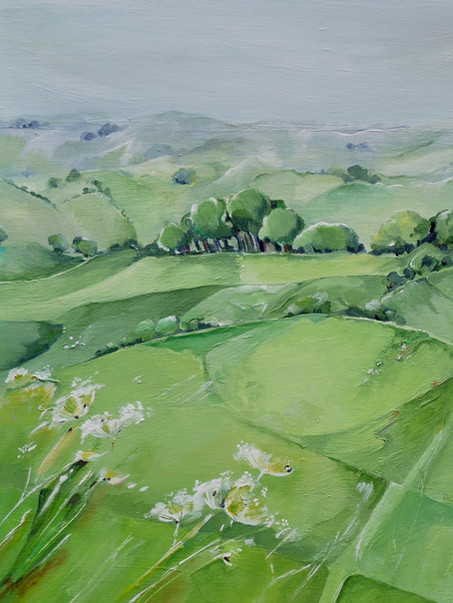 SOLD Cow Parsley, Eggardon hill.