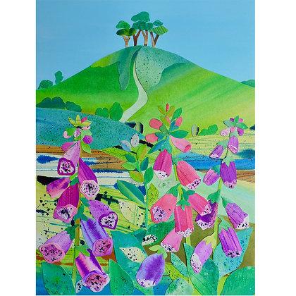 A4 Giclee print - Foxgloves, Colmer's Hill