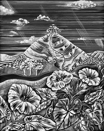Convolvulus, Colmer's Hill - A3 Giclee Print - Monochromatic Illustration