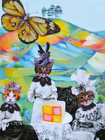 Cats tea party, Colmer's Hill