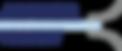 logo armor vision 200DPI.png