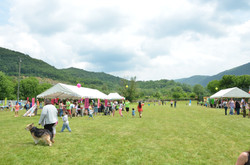 Festival des FRANCAS
