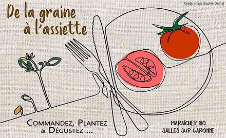 plants de tomates bio logo.jpg